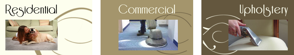 citycarpetcleaning-charlotte